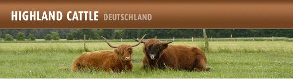 Banner - Highland Cattle Deutschland